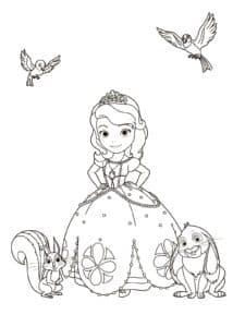 Раскраска детская принцесса София