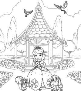 Принцесса София и птички