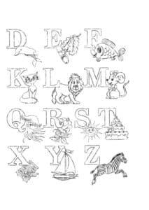 Алфавит от D до Z