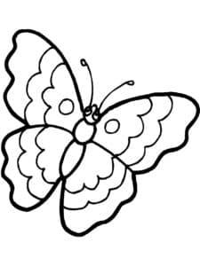 бабочка с волнами на крыльях