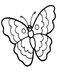 бабочка с узорами и волнистыми крыльями