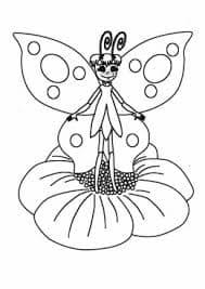 бабочка стоит на цветке