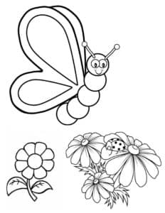 бабочка и божья коровка