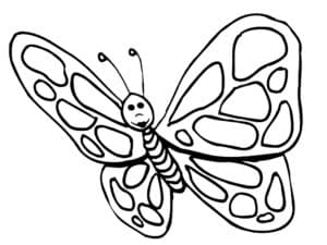 полосатая бабочка