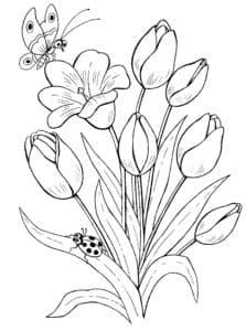 красивые цветочки и насекомые