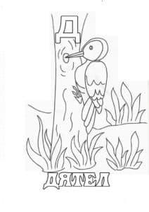 Раскраска буква Д дятел
