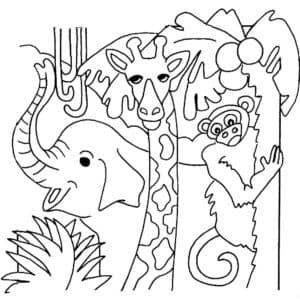 Слон жираф и обезьяна