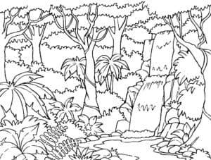 Пальмы в джунглях