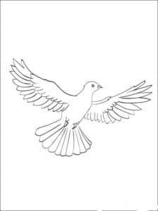 летящий голубь картинка