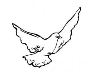 голубь в полете детская раскраска