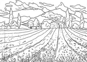 поле и горы