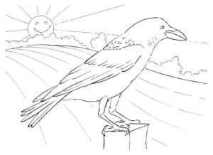 грач на пеньке и солнце