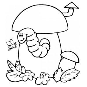Гусеница в грибе