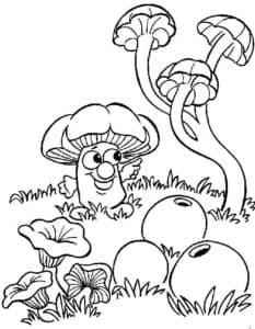 Живой гриб
