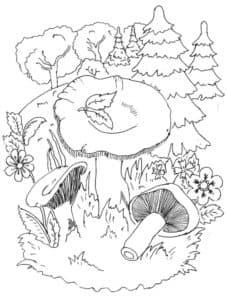 лисички и елки