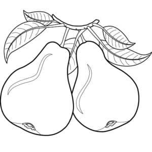 детская раскраска груша