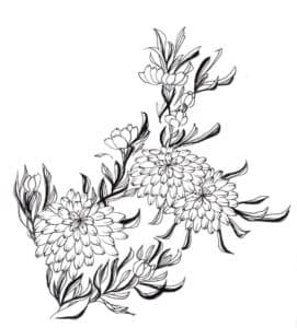 Хризантемы с листьями
