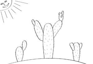 кактусы под солнцем