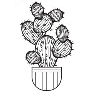 кактусы в горшке детская раскраска