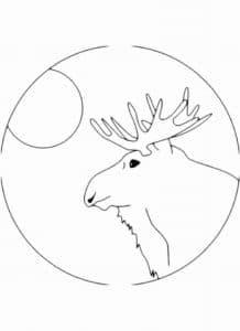круг и лось