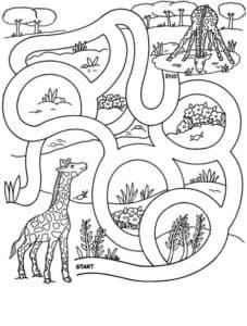 жираф и осьминог лабиринт