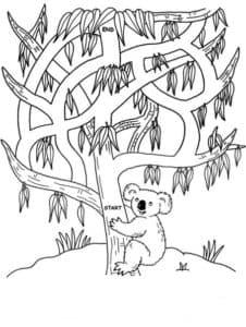 лабиринт панда на дереве
