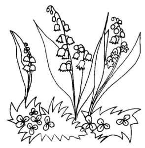 ландыши и маленькие цветочки