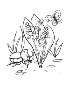 ландыш и насекомые