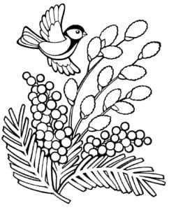 Мимоза и птичка