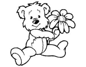 медведь с большой ромашкой