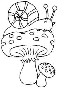 улитка на мухоморе
