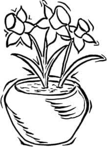 ваза с нарциссами
