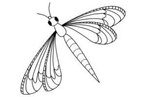 раскраска детская насекомое