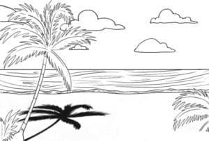 Пальмы облака и океан