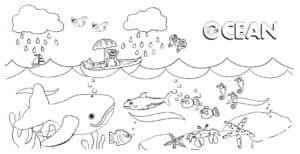 раскраска для детей океан