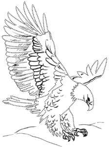 Орел раскраска по точкам