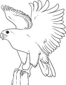 Орел на пеньке