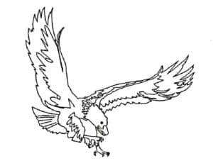 Орел атакует раскраска
