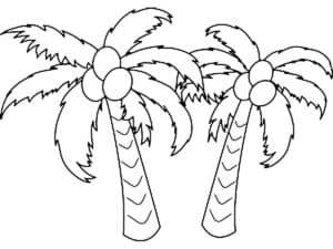 две пальмы с кокосами