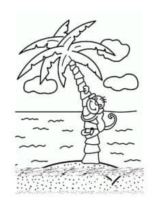 пальма и обезьяна