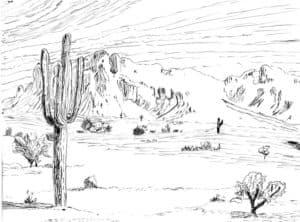 пустыня раскраска для детей