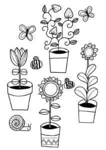 Цветы в горшках и улитка