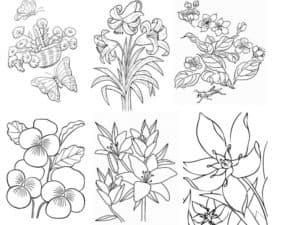 цветочки детская раскраска