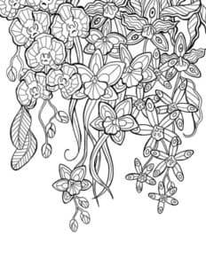 красивые цветочки раскраска