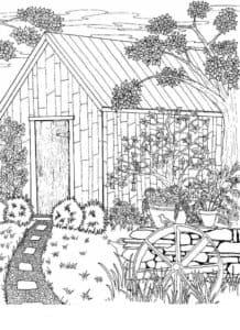 дом и тропинка