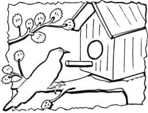 картинка птица и скворечник