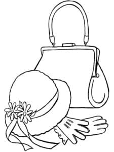 панама перчатки с сумка