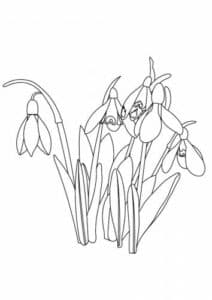 Цветочки с травой детская раскраска