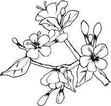веточка с цветами