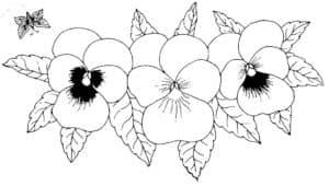 Цветочки и насекомое